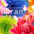 蜷川実花監修*進化し続けるカメラアプリ【cameran】の世界*。・